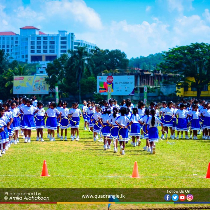 HCK_PRIMARY_SPORTSMEET_2019_DRILLDISPAY (50)