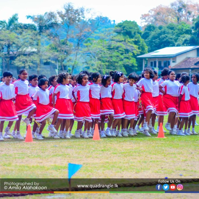 HCK_PRIMARY_SPORTSMEET_2019_DRILLDISPAY (56)