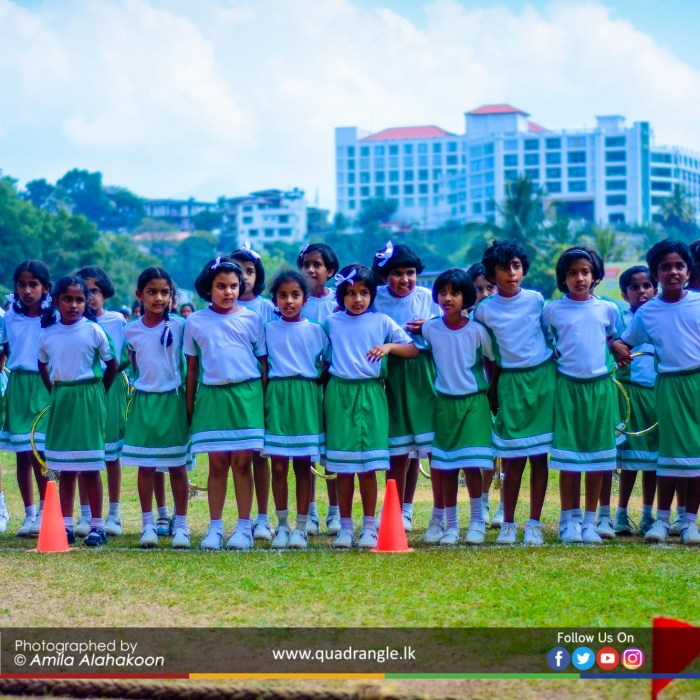HCK_PRIMARY_SPORTSMEET_2019_DRILLDISPAY (59)