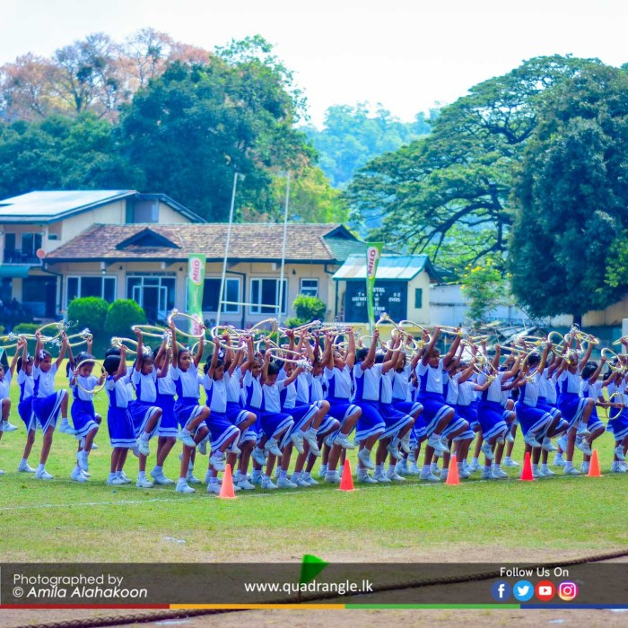 HCK_PRIMARY_SPORTSMEET_2019_DRILLDISPAY (60)