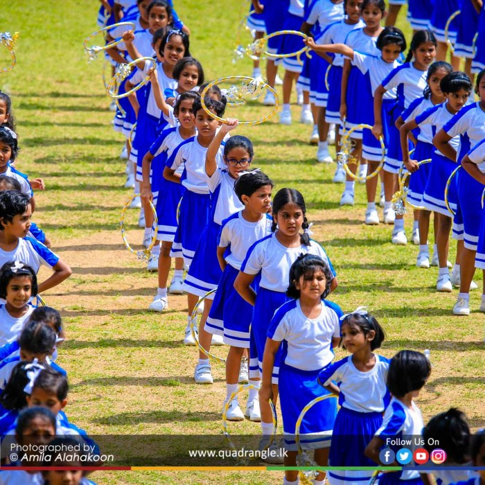 HCK_PRIMARY_SPORTSMEET_2019_DRILLDISPAY (68)