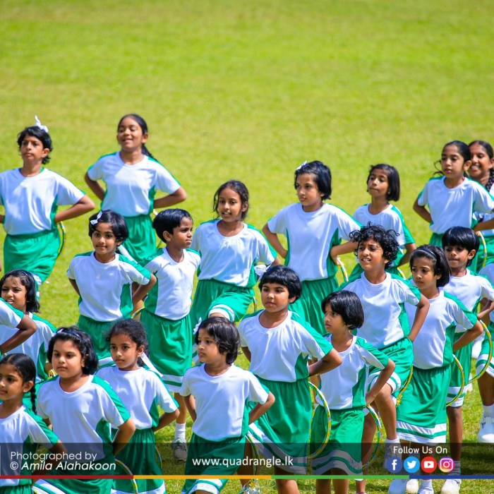 HCK_PRIMARY_SPORTSMEET_2019_DRILLDISPAY (74)