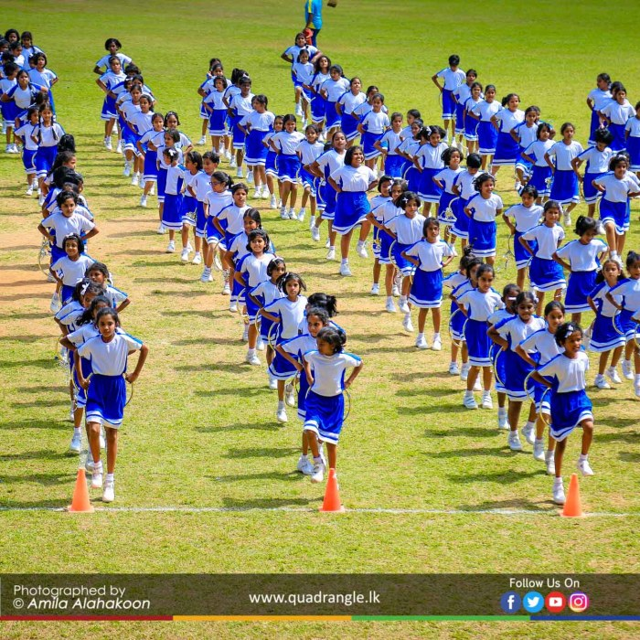 HCK_PRIMARY_SPORTSMEET_2019_DRILLDISPAY (86)
