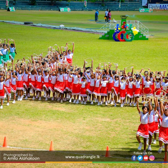 HCK_PRIMARY_SPORTSMEET_2019_DRILLDISPAY (96)