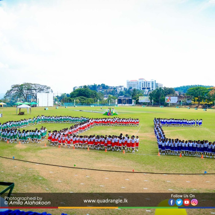 HCK_PRIMARY_SPORTSMEET_2019_DRILLDISPAY (99)