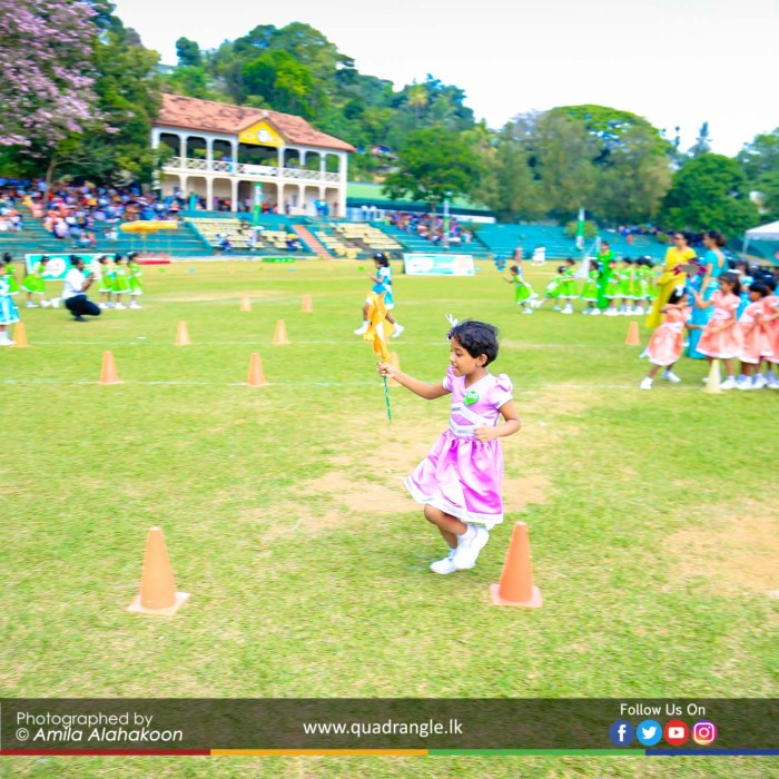HCK_PRIMARY_SPORTSMEET_2019_EVENTS (123)