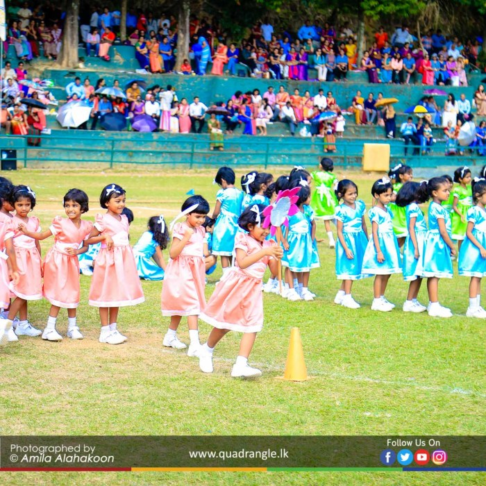 HCK_PRIMARY_SPORTSMEET_2019_EVENTS (127)