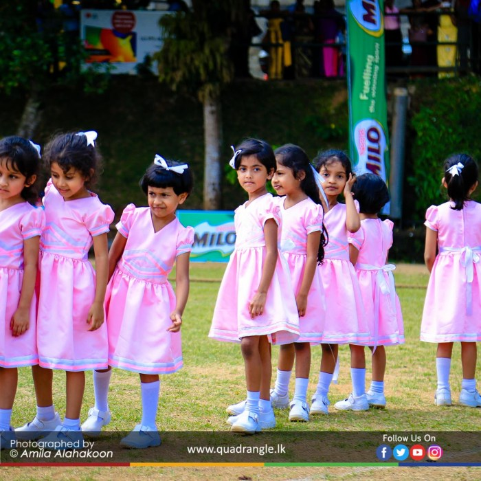 HCK_PRIMARY_SPORTSMEET_2019_EVENTS (135)