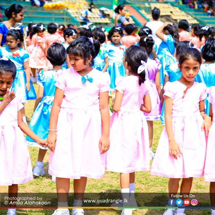 HCK_PRIMARY_SPORTSMEET_2019_EVENTS (153)