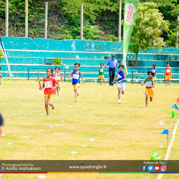 HCK_PRIMARY_SPORTSMEET_2019_EVENTS (209)
