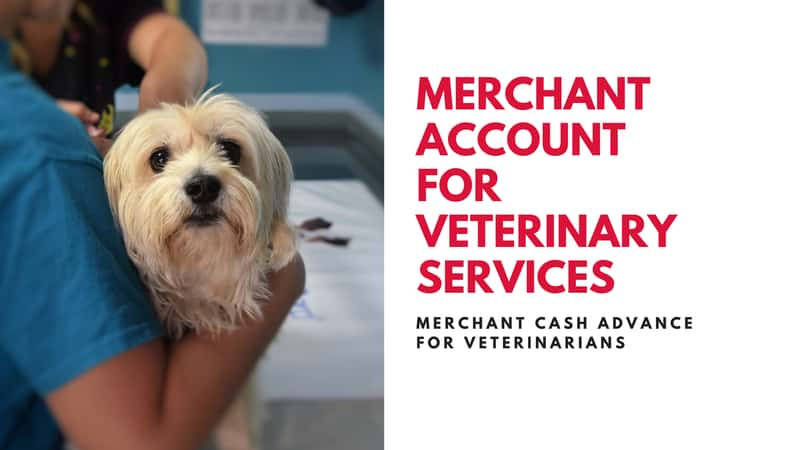 Merchant services for Veterinary