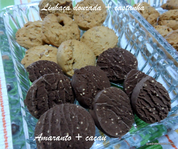 Linhaça Dourada com Castanhas e Amaranto com Cacau - Cookies Vitalin sem glúten