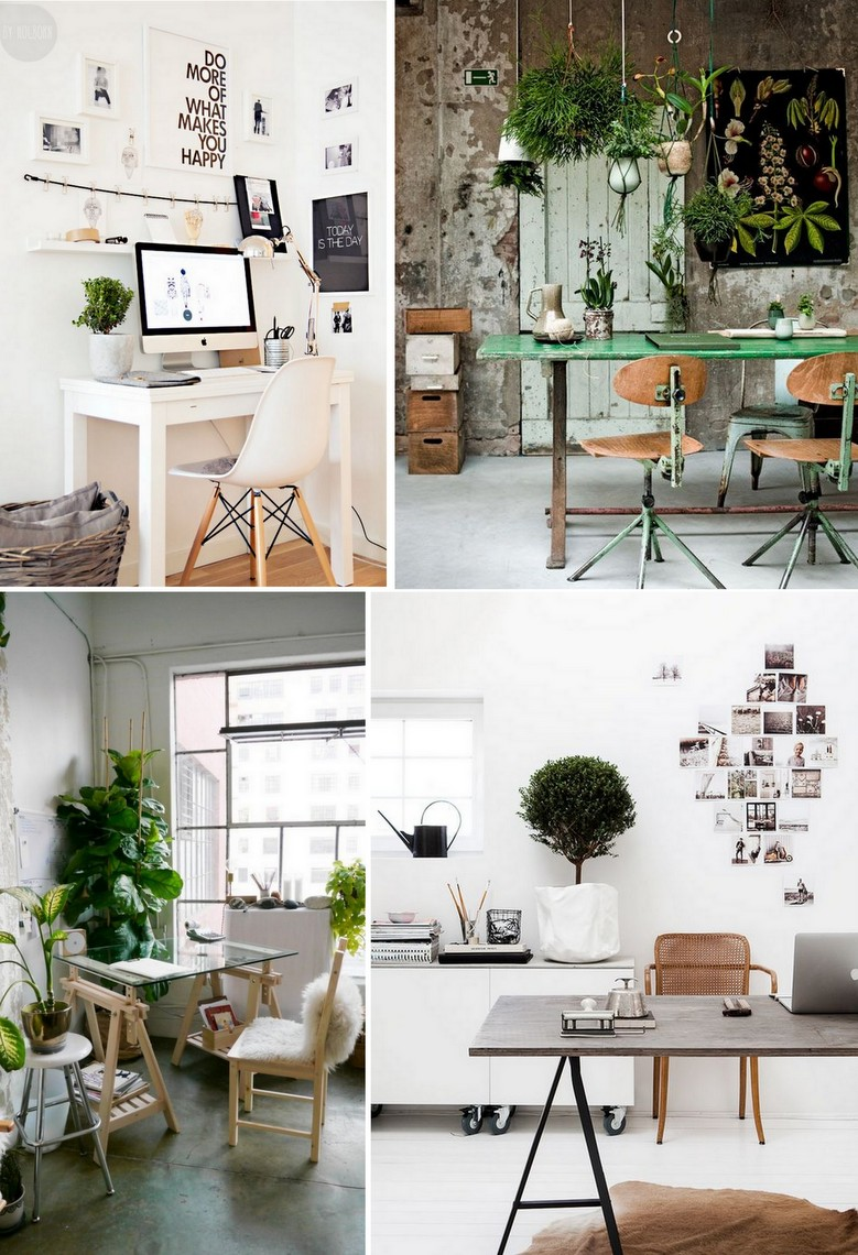 Plantas no Home Office