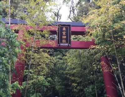 【来宮神社】樹齢2000年を超える国内屈指の大楠がある、伊豆半島熱海のパワースポット!