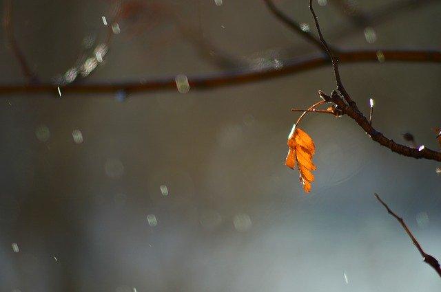 【開運】不思議な現象『お天気雨』のスピリチュアルな意味や「狐の嫁入り」と呼ばれる由来