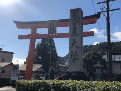 【松尾大社】で開運!洛西総氏神、醸造祖神の松尾さん♪御朱印とお酒のお守りも頂いてきました!