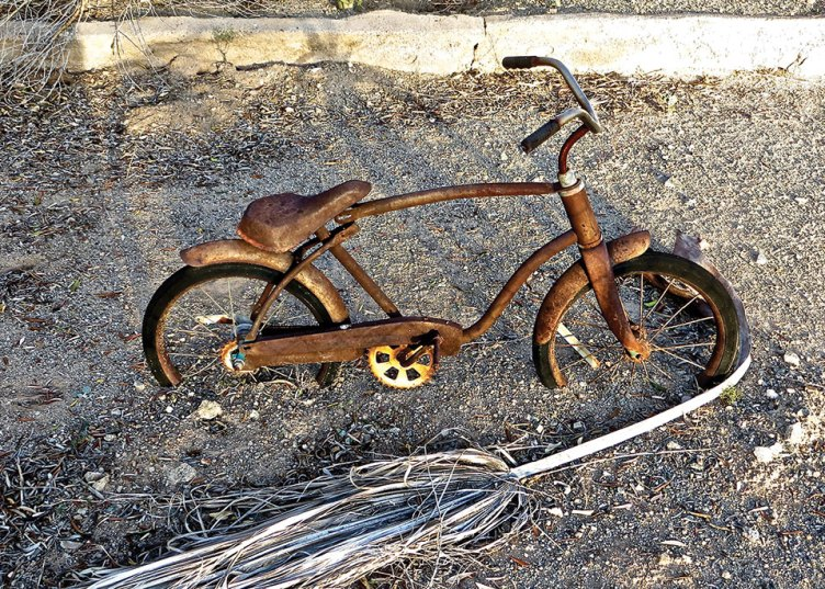 Steve Piepmeier placed third for his image Rusty Bike.