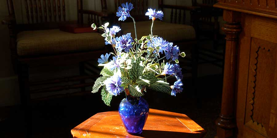Vase in Worship