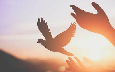 Spirit Rising — Young Quaker Voices