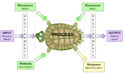 Turtle-diagram
