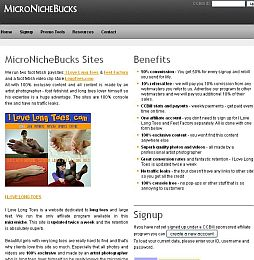 MicroNicheBucks Adult Affiliate Program