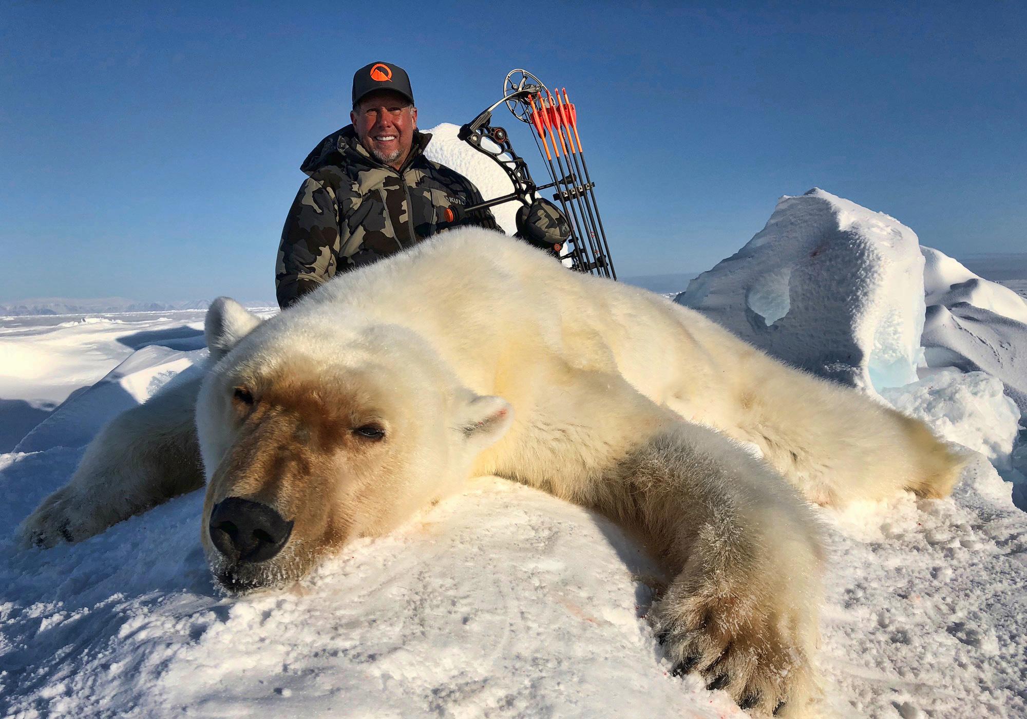 Polar Bear In The Frozen Arctic