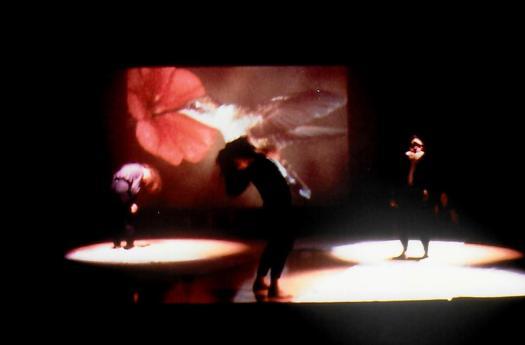 DCK, 3 dancers under 3 spots
