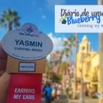 Diário de uma Blueberry – O treinamento Disney
