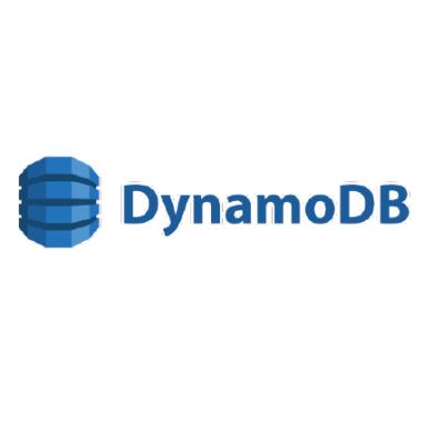 Dynamo-01
