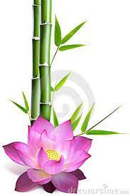 https://i0.wp.com/quangduc.com/images/file/RIokAZwU0QgBAE4T/lotus-2.jpg