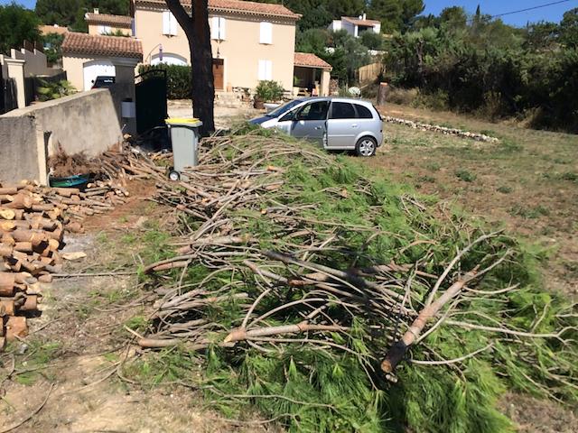 Quantacav-arboriste-elagueur-ranger des branches-ranger bois