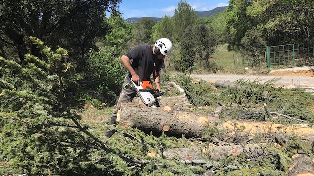 Quantacav-arboriste-elagueur-tronconneuse-couper tronc-planche2