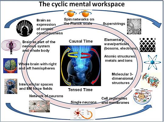 cyclicmentalworkspace