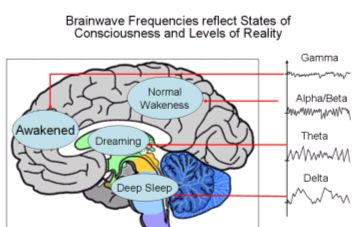 Altered states of consciousness - Quantum Mind