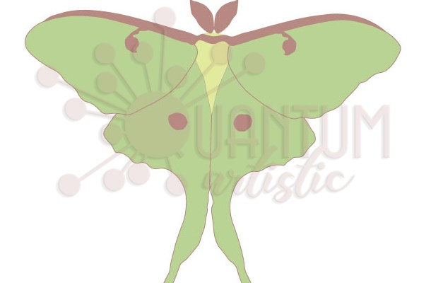 Custom Luna Moth SVG | Now Available