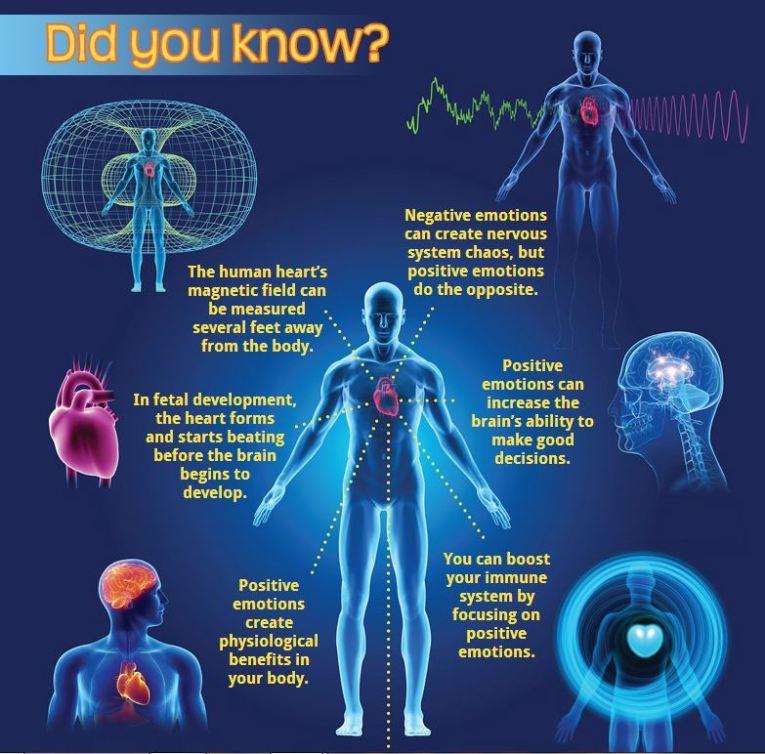 Heartmath Information