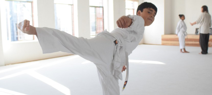 Online Martial Arts for Kids