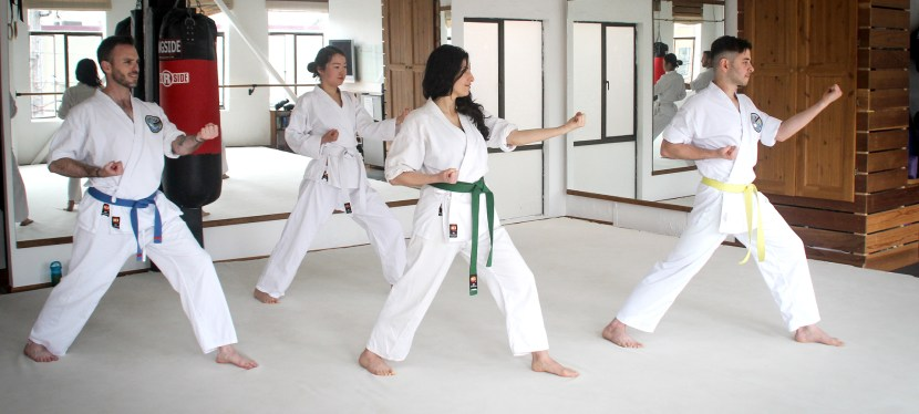 Online Martial Arts for Adults