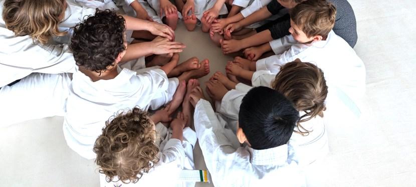 Quantum Martial Arts : Statement of Inclusion