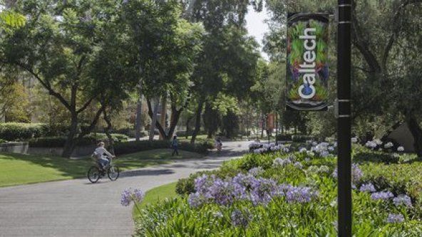 The Caltech Campus.