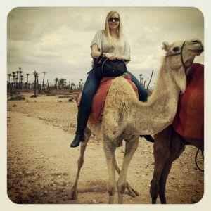 Camel ride in Morocco Bucket list