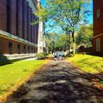 Walking the Harvard campus harvard massachusetts cambridge campus fall autumnhellip