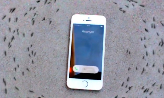 EXCLUSIF – Les ondes des téléphones sont donc nocives ?
