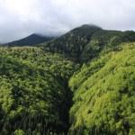 Maramures Carpathians