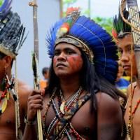 Vozes Indígenas Num Clima Em Mudança
