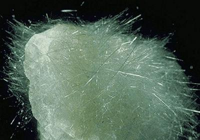 Quasimodonline  minerali