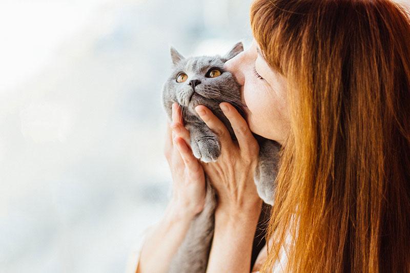 A quel âge un chat peut-il s'accoupler ?