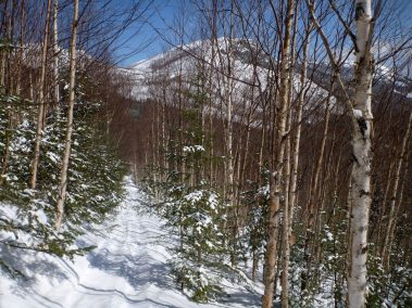 Ski de randonnée nordique Demie-Traversée de Charlevoix 6