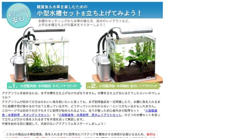 初めてでも安心!観賞魚&水草を楽しむための小型水槽セットを立ち上げてみよう!