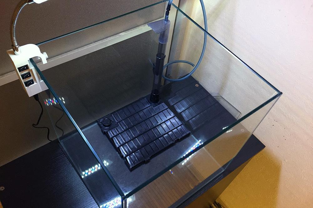 写真で解説!底面フィルターの特徴と仕組み・使い方や掃除方法・おすすめな製品・底床まで徹底解説!